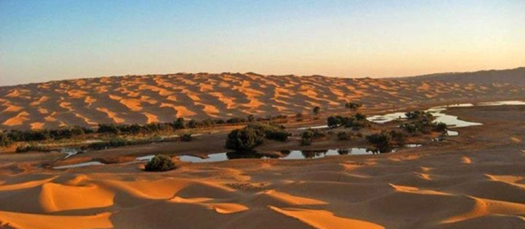 Wüstenkarawane im Grand Erg Oriental